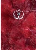 Блокнот Top Business Awards - линованный (красный мрамор)